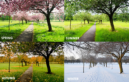 all-seasons-garden